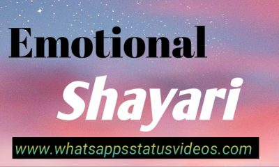 Sad Emotional Shayari Download Status Video 2020