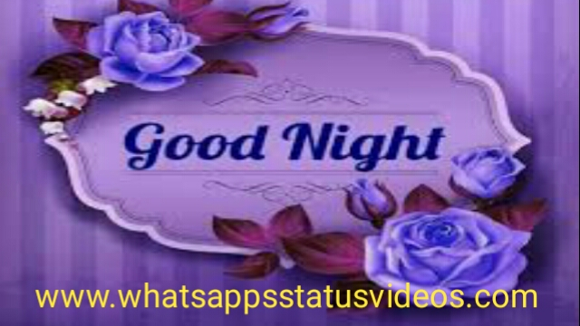 Good Night Wish Good Night Love Whatsapp Status Video Download