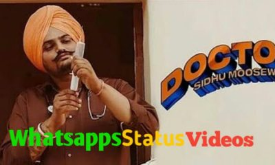 Doctor Sidhu Moose Wala Song WhatsApp Status Video