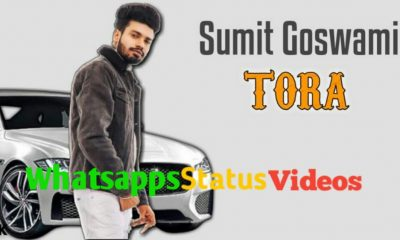Tora Song Sumit Goswami Whatsapp Status Video