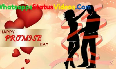 Happy Promise Day 2021 Whatsapp Status Video Download