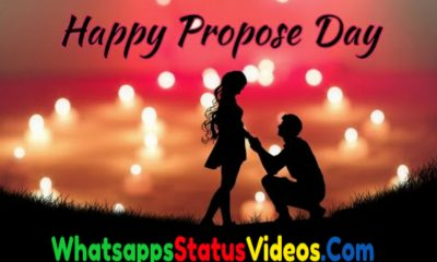 Happy Propose Day 2021 Whatsapp Status Video Download