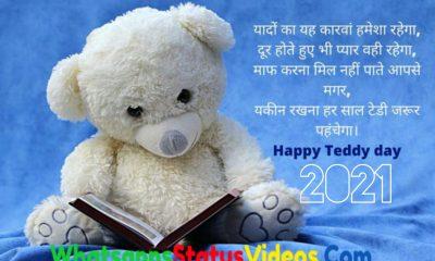 Happy Teddy Day 2021 Whatsapp Status Video Download
