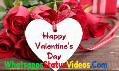 Happy Valentine Day 2021 Whatsapp Status Video Download