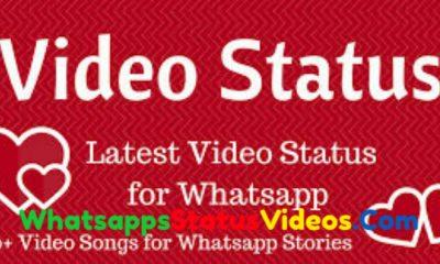 1000+ Whatsapp Status Video Download
