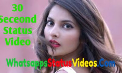 30 Seconds Whatsapp Status Video Download