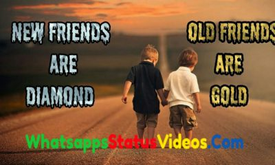 Friendship Day Special Whatsapp Status Video Download