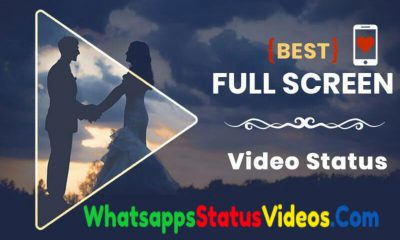 Full Screen Whatsapp Status Video Download