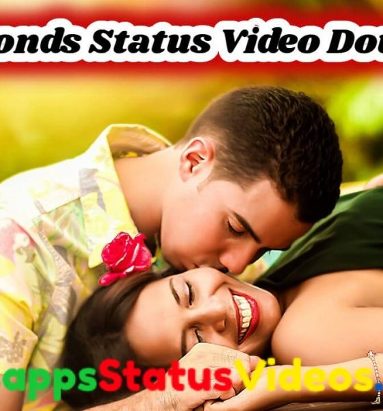 30 Seconds Whatsapp Status Video Download