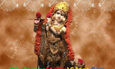 Krishna Janmotsav Special Whatsapp Status Video Download